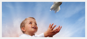 little boy with dove